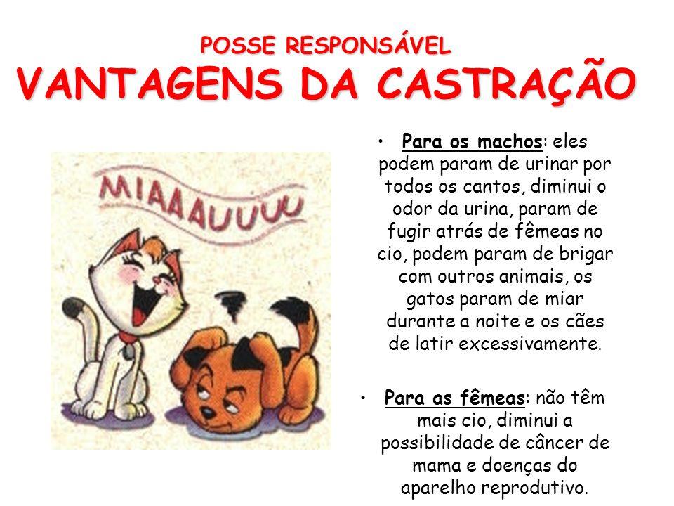 POSSE RESPONSÁVEL VANTAGENS DA CASTRAÇÃO