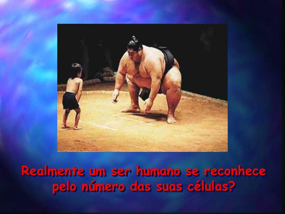 Realmente um ser humano se reconhece pelo número das suas células