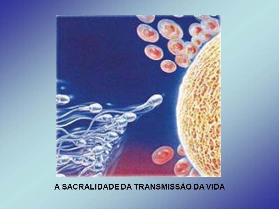 A SACRALIDADE DA TRANSMISSÃO DA VIDA