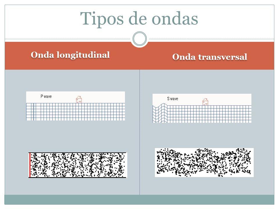 Tipos de ondas Onda longitudinal Onda transversal 3