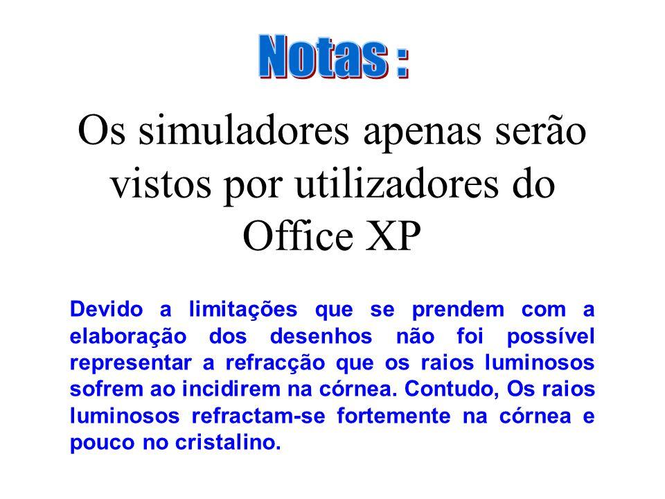 Os simuladores apenas serão vistos por utilizadores do Office XP