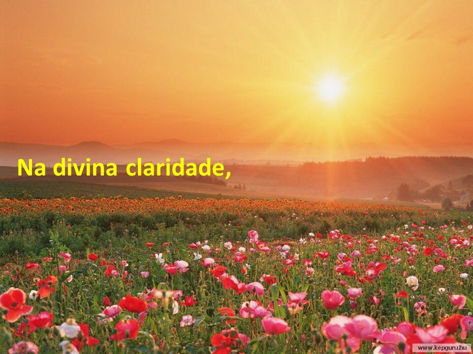 Na divina claridade,