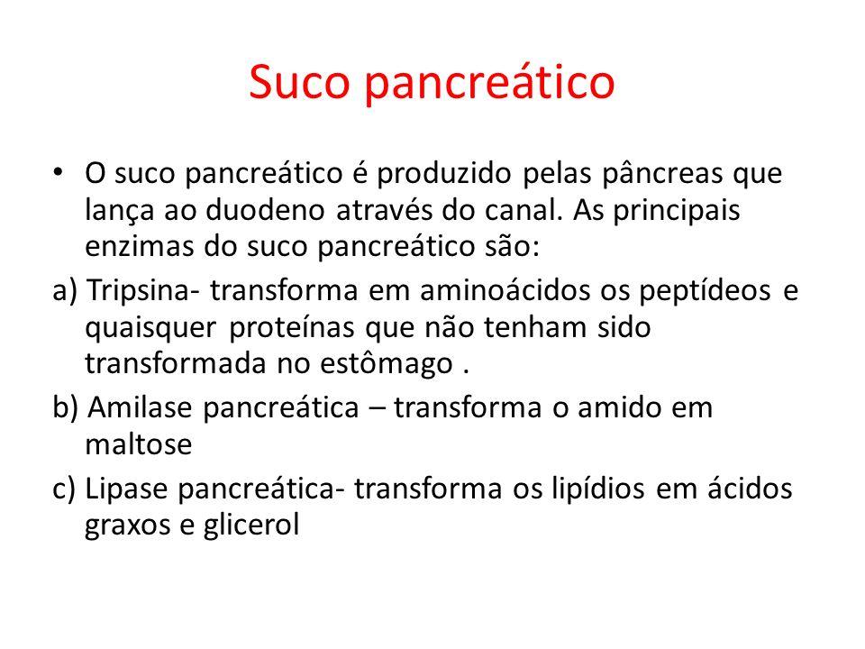 Suco pancreático O suco pancreático é produzido pelas pâncreas que lança ao duodeno através do canal. As principais enzimas do suco pancreático são: