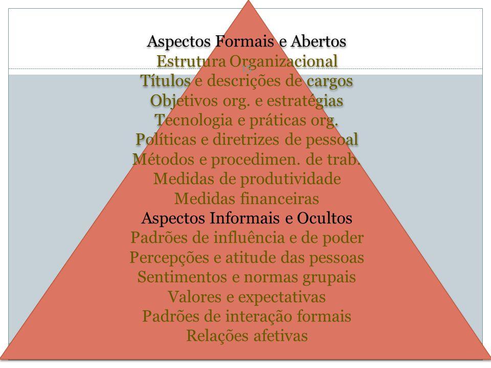 Aspectos Formais e Abertos Estrutura Organizacional