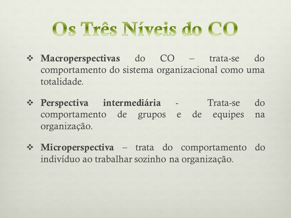 Os Três Níveis do CO Macroperspectivas do CO – trata-se do comportamento do sistema organizacional como uma totalidade.