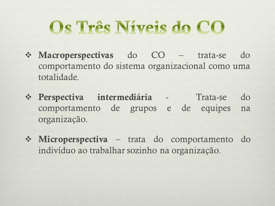 Os Três Níveis do COMacroperspectivas do CO – trata-se do comportamento do sistema organizacional como uma totalidade.