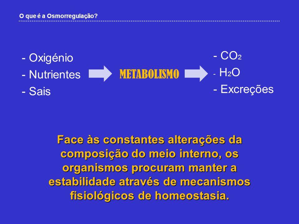 CO2 Oxigénio Nutrientes Excreções Sais METABOLISMO