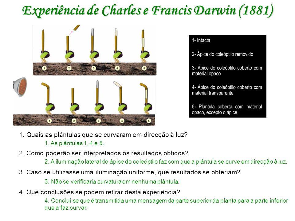 Experiência de Charles e Francis Darwin (1881)