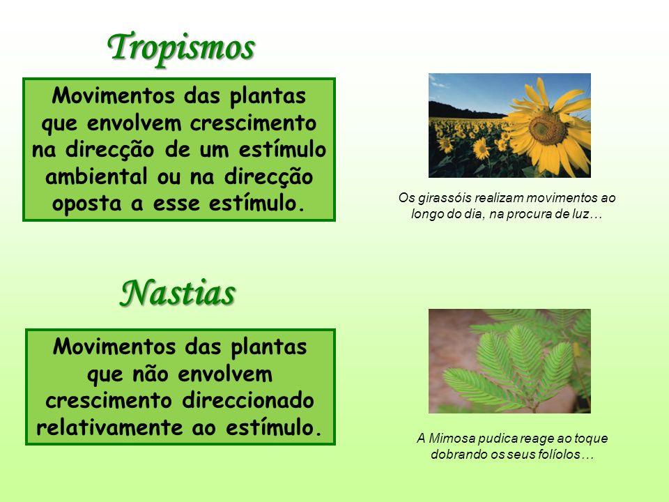 Tropismos Movimentos das plantas que envolvem crescimento na direcção de um estímulo ambiental ou na direcção oposta a esse estímulo.