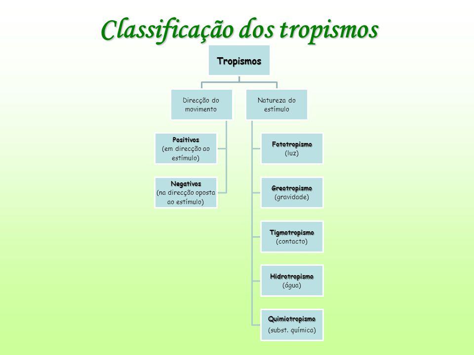 Classificação dos tropismos