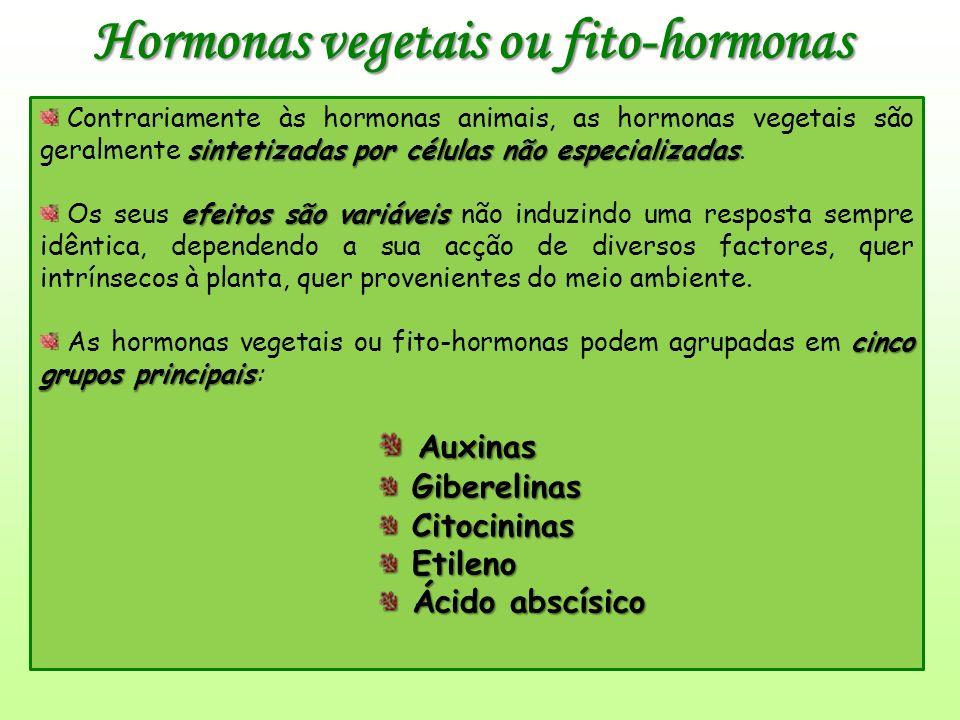 Hormonas vegetais ou fito-hormonas