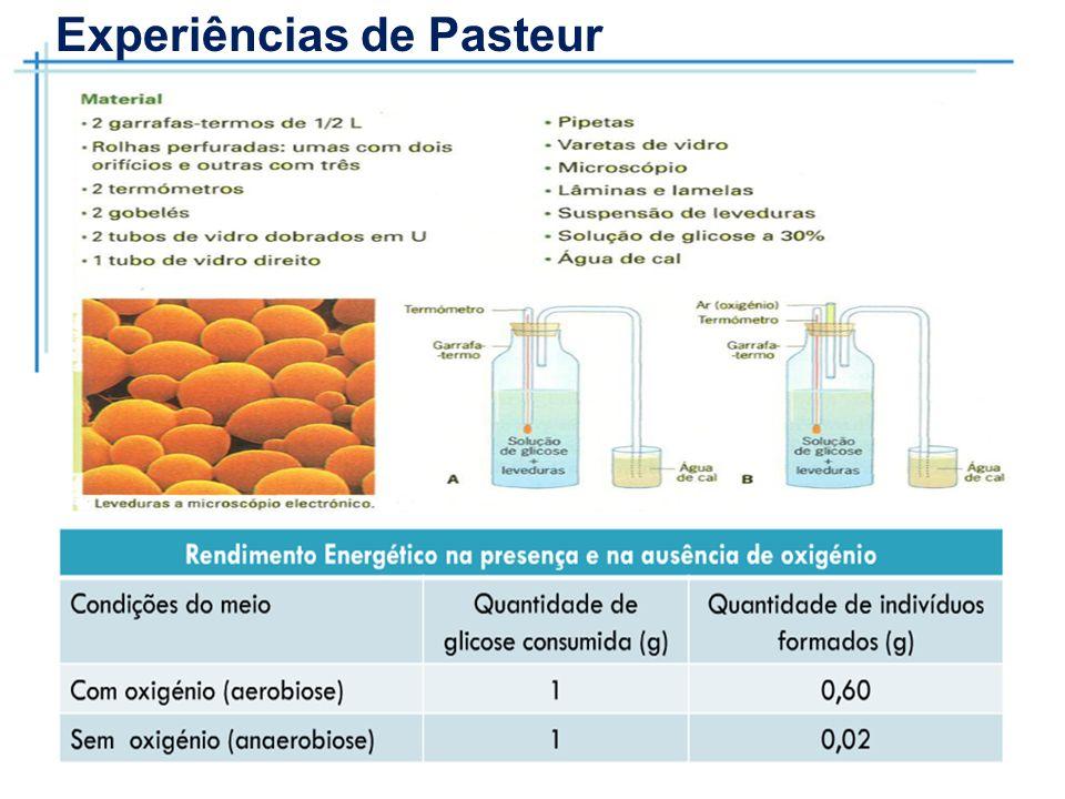Experiências de Pasteur