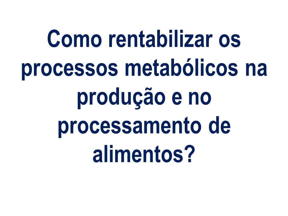 Como rentabilizar os processos metabólicos na produção e no processamento de alimentos