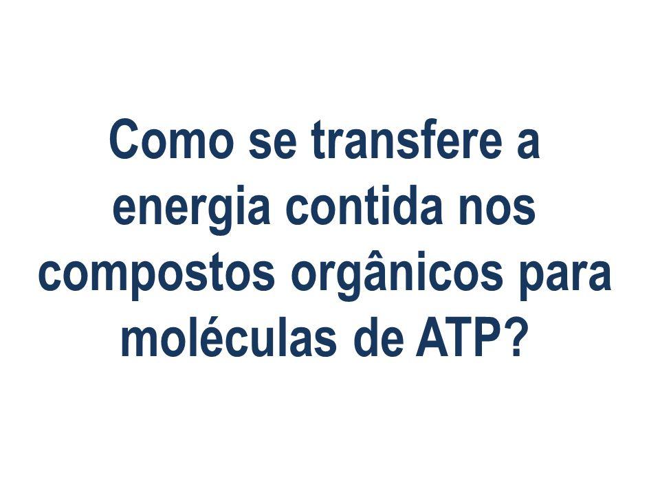 Como se transfere a energia contida nos compostos orgânicos para moléculas de ATP