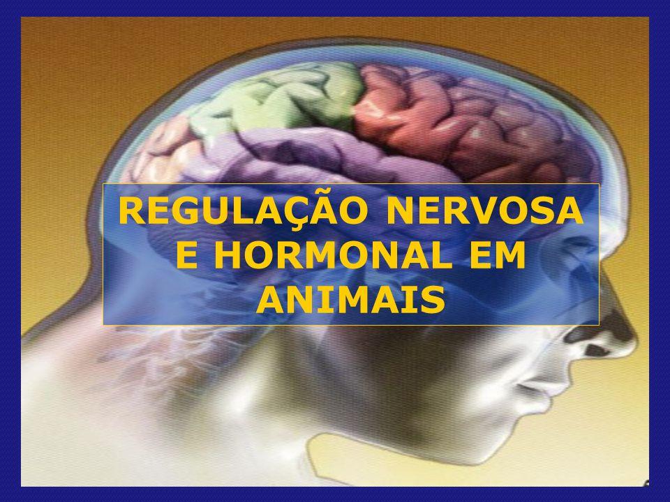 REGULAÇÃO NERVOSA E HORMONAL EM ANIMAIS