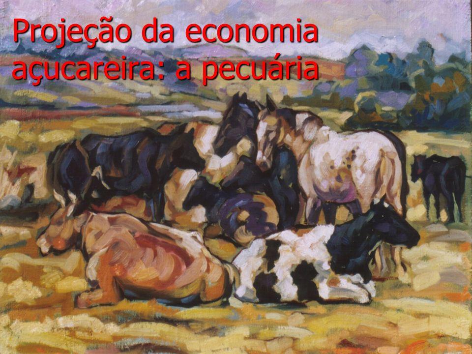 Projeção da economia açucareira: a pecuária