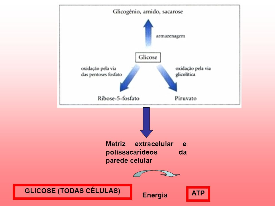 GLICOSE (TODAS CÉLULAS)