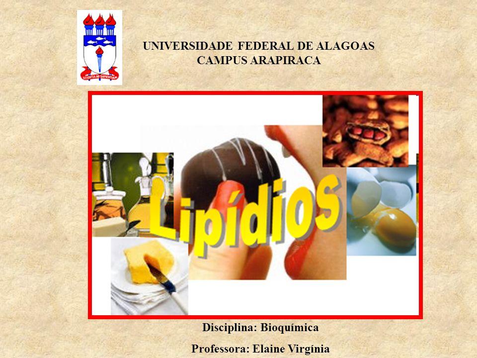 UNIVERSIDADE FEDERAL DE ALAGOAS CAMPUS ARAPIRACA