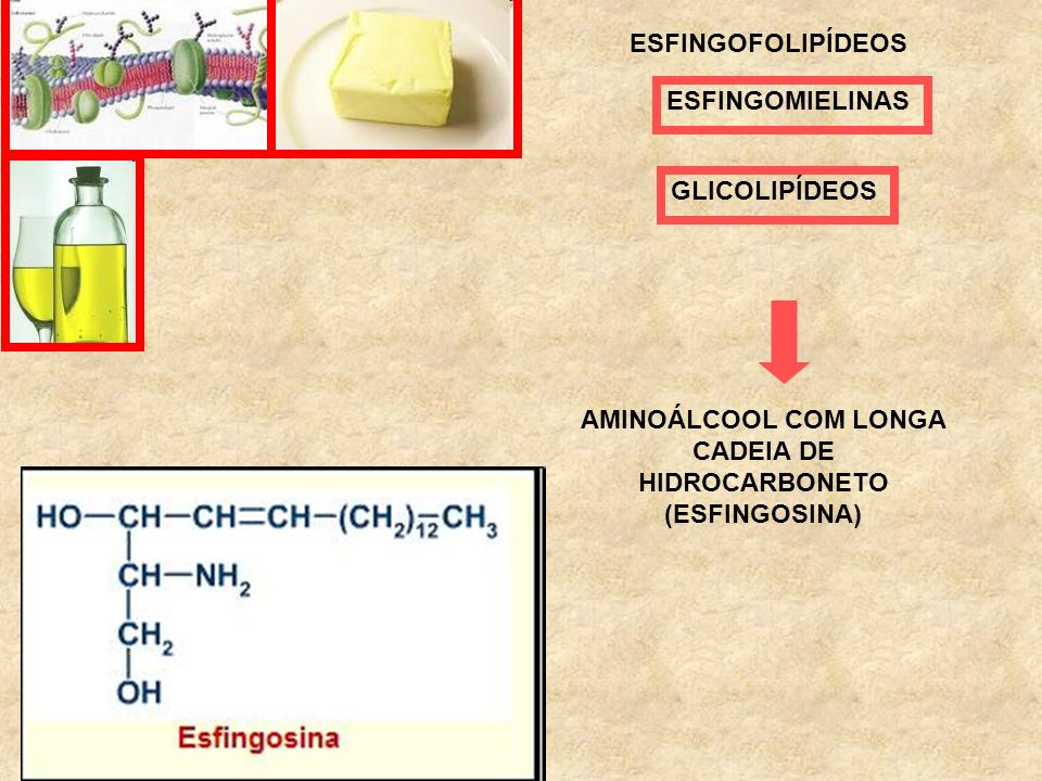 AMINOÁLCOOL COM LONGA CADEIA DE HIDROCARBONETO (ESFINGOSINA)