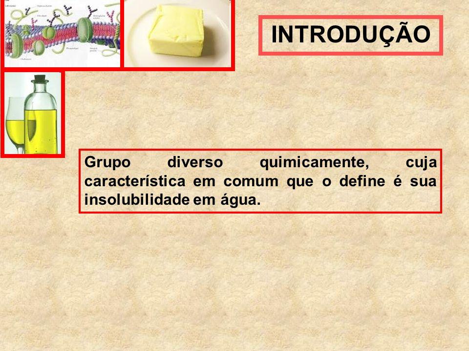 INTRODUÇÃO Grupo diverso quimicamente, cuja característica em comum que o define é sua insolubilidade em água.
