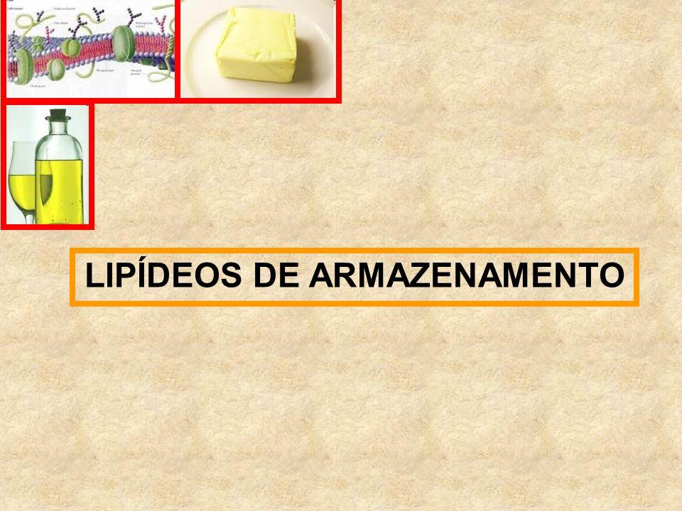 LIPÍDEOS DE ARMAZENAMENTO