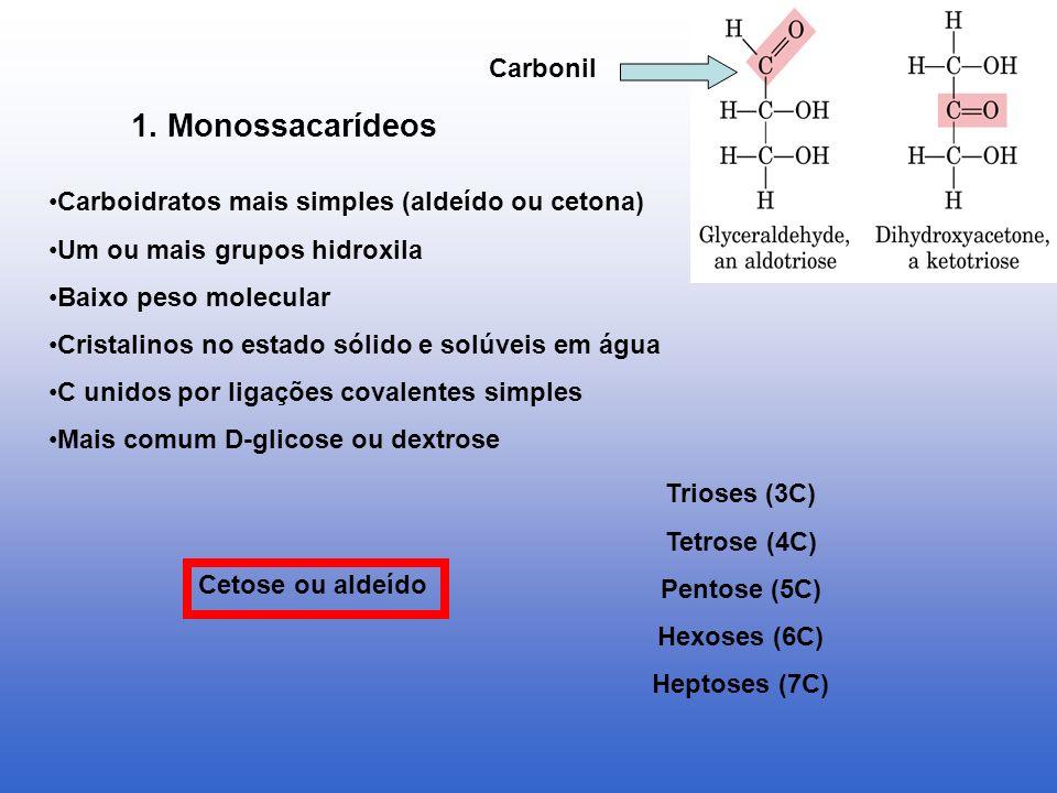 1. Monossacarídeos Carbonil