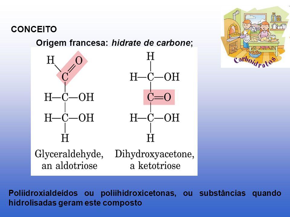 Origem francesa: hidrate de carbone;