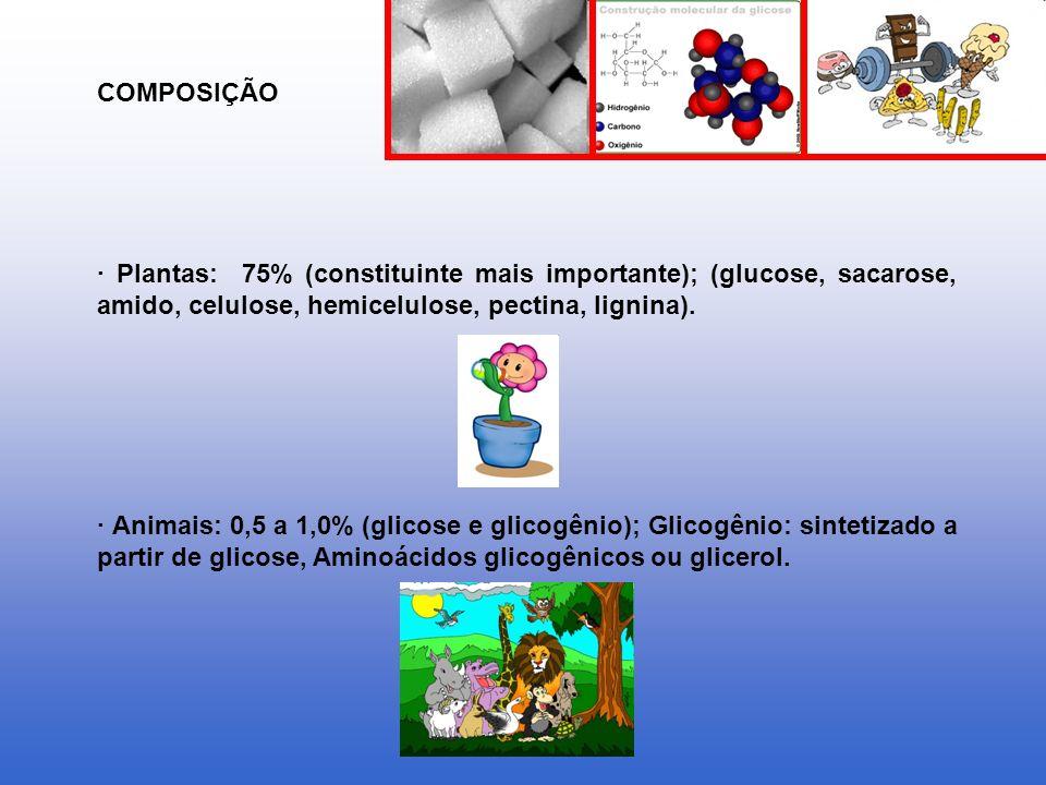 COMPOSIÇÃO · Plantas: 75% (constituinte mais importante); (glucose, sacarose, amido, celulose, hemicelulose, pectina, lignina).