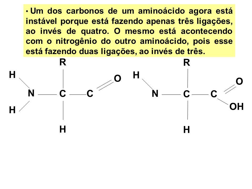 Um dos carbonos de um aminoácido agora está instável porque está fazendo apenas três ligações, ao invés de quatro. O mesmo está acontecendo com o nitrogênio do outro aminoácido, pois esse está fazendo duas ligações, ao invés de três.