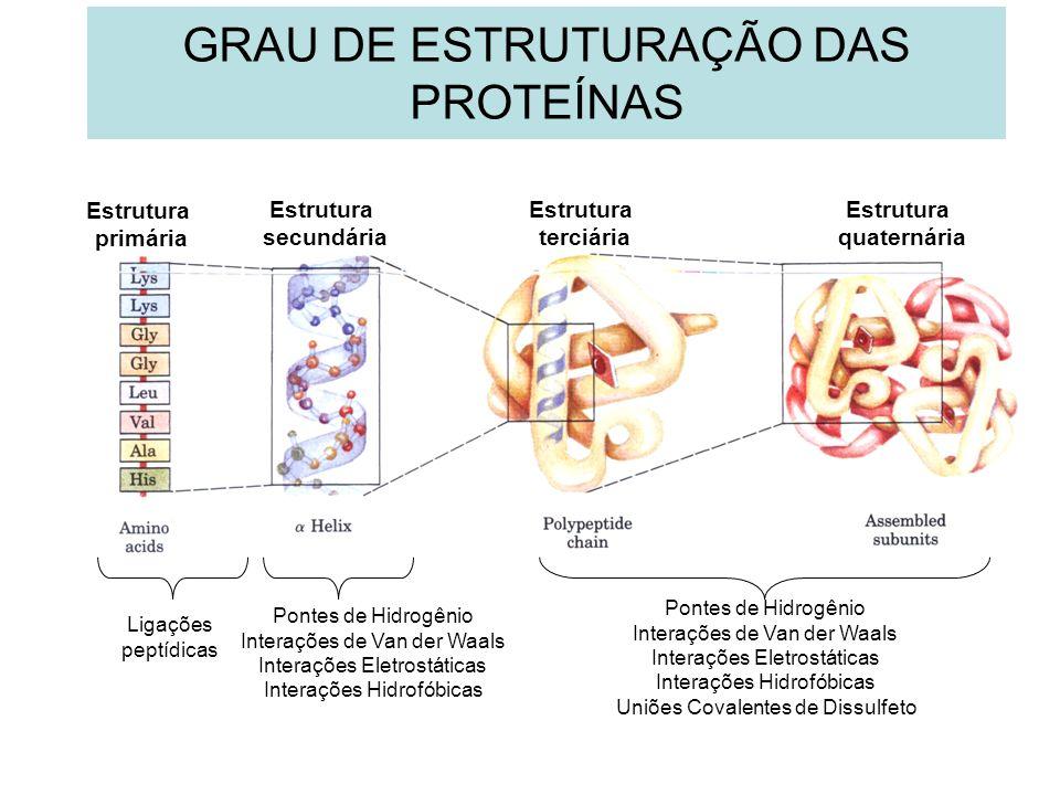 GRAU DE ESTRUTURAÇÃO DAS PROTEÍNAS