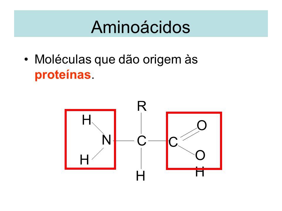Aminoácidos Moléculas que dão origem às proteínas. R H O N C C O H H H