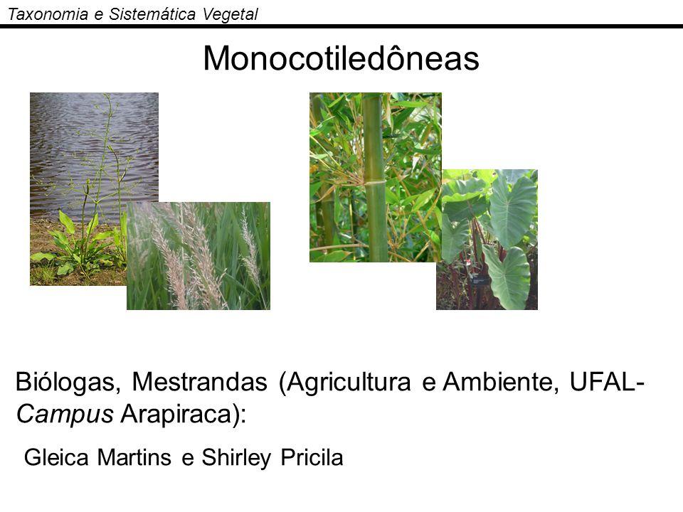 Monocotiledôneas Gleica Martins e Shirley Pricila
