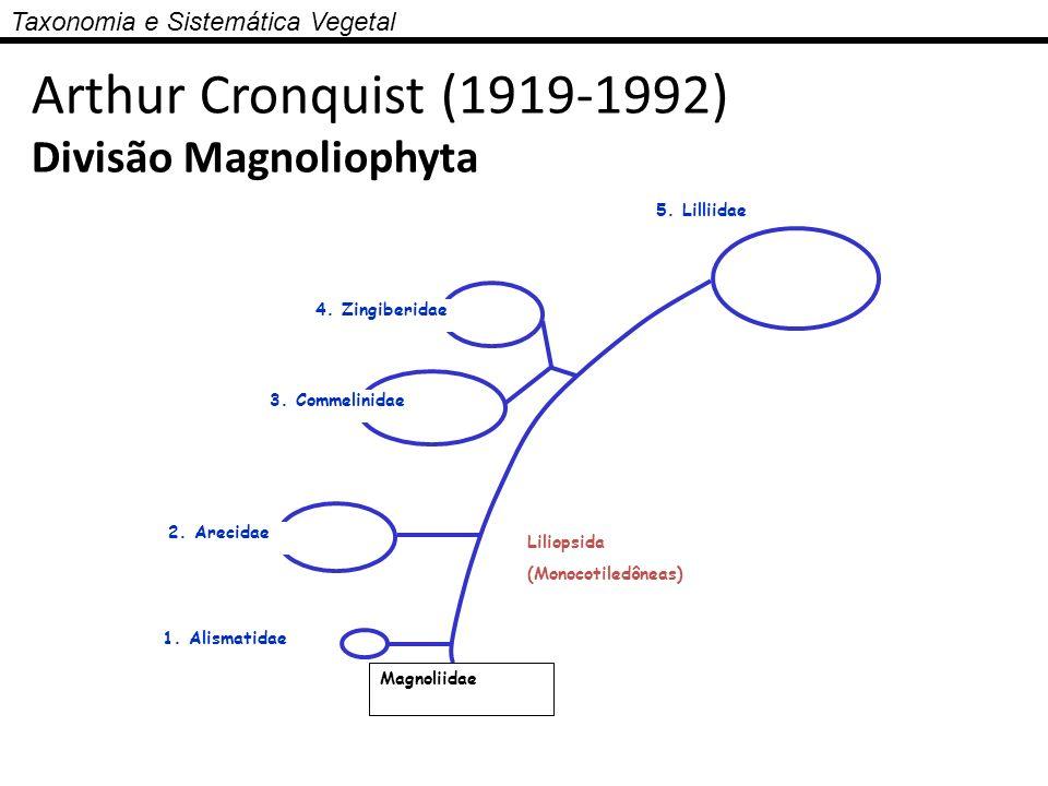 Arthur Cronquist (1919-1992) Divisão Magnoliophyta