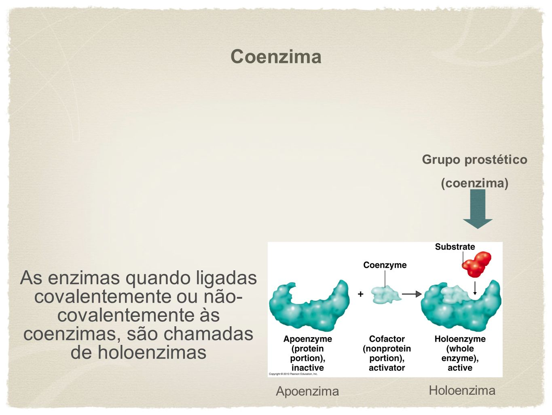 Coenzima Grupo prostético. (coenzima) As enzimas quando ligadas covalentemente ou não-covalentemente às coenzimas, são chamadas de holoenzimas.