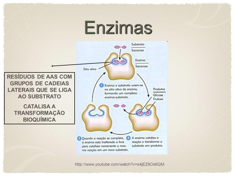 CATALISA A TRANSFORMAÇÃO BIOQUÍMICA