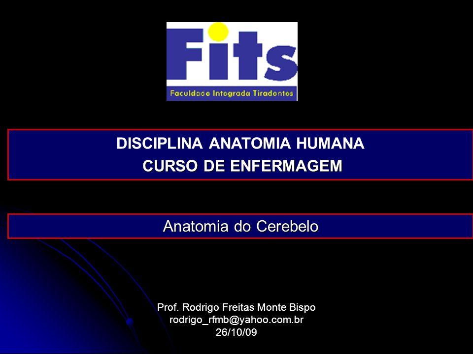 DISCIPLINA ANATOMIA HUMANA CURSO DE ENFERMAGEM