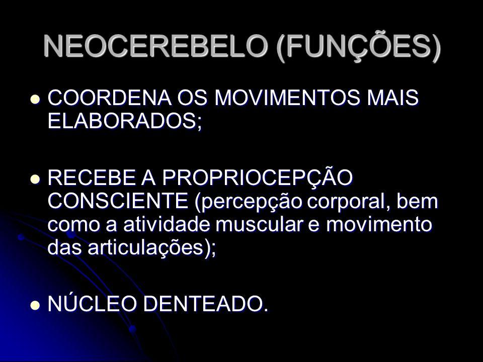 NEOCEREBELO (FUNÇÕES)