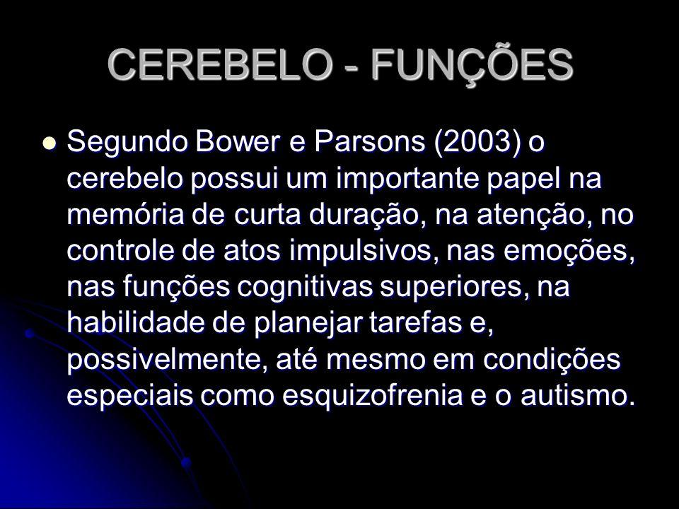 CEREBELO - FUNÇÕES