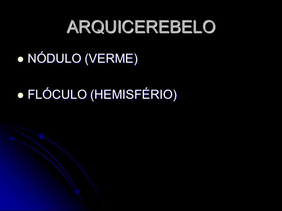 ARQUICEREBELO NÓDULO (VERME) FLÓCULO (HEMISFÉRIO)