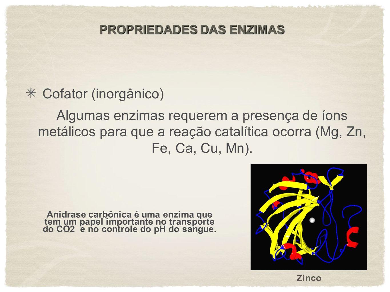 PROPRIEDADES DAS ENZIMAS