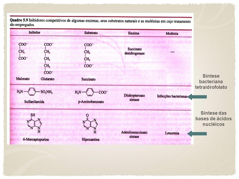 Síntese bacteriana tetraidrofolato