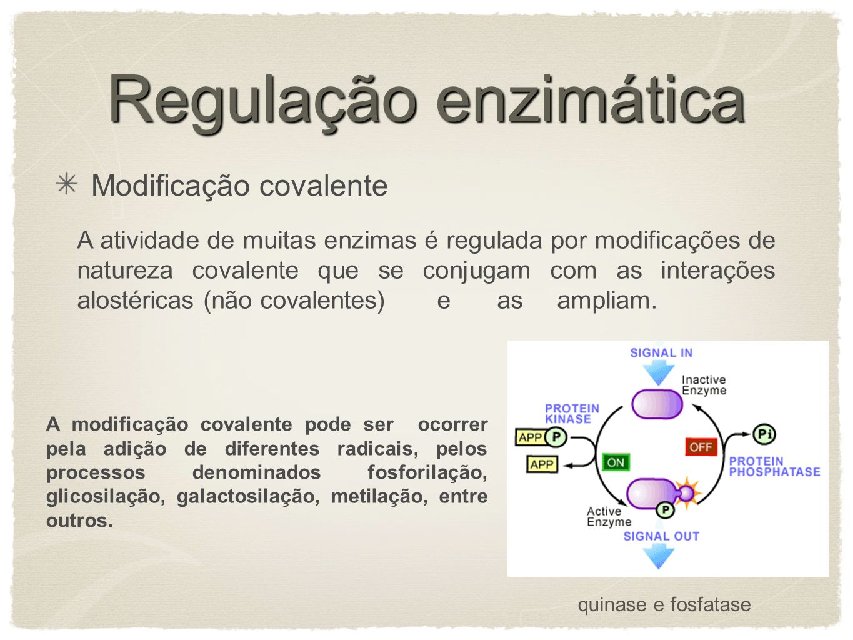Regulação enzimática Modificação covalente