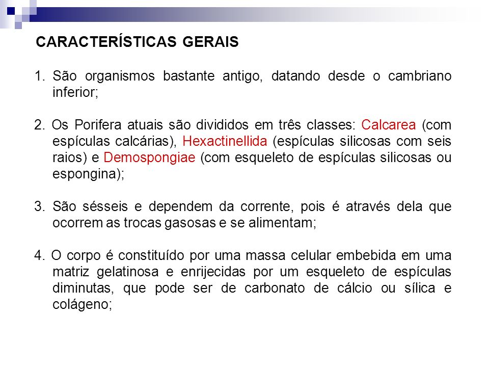 CARACTERÍSTICAS GERAIS