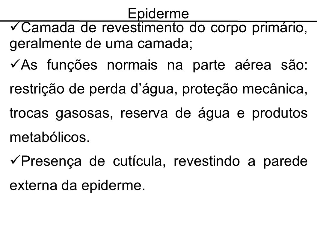 Epiderme Camada de revestimento do corpo primário, geralmente de uma camada;