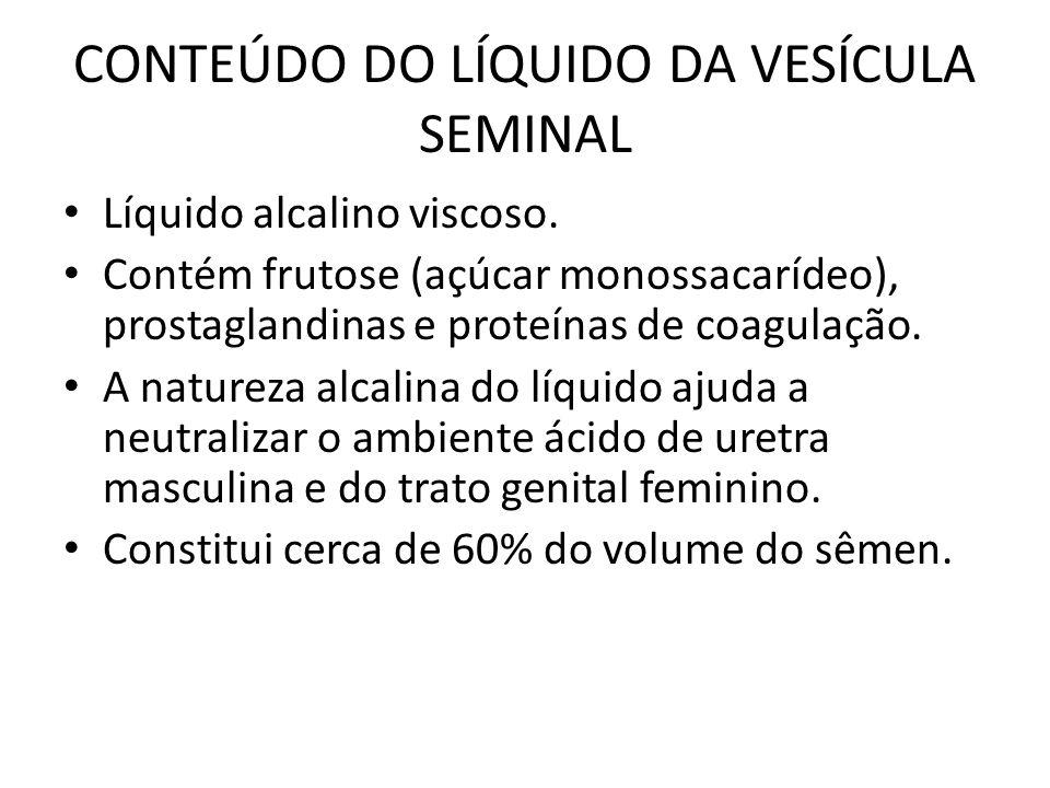 CONTEÚDO DO LÍQUIDO DA VESÍCULA SEMINAL