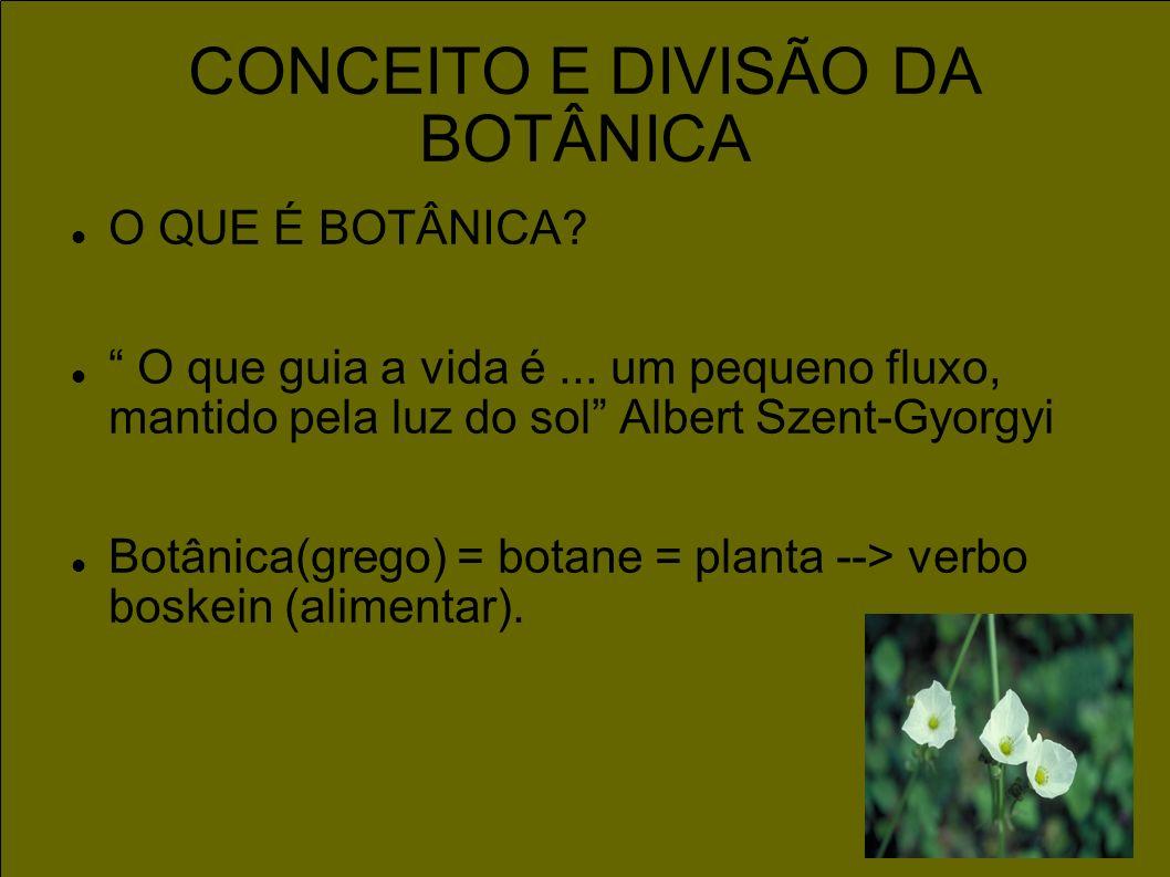 CONCEITO E DIVISÃO DA BOTÂNICA