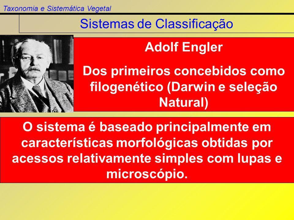 Dos primeiros concebidos como filogenético (Darwin e seleção Natural)