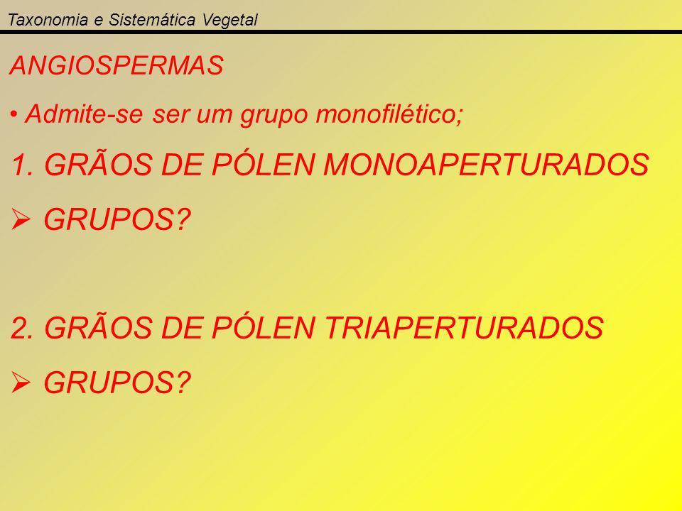 1. GRÃOS DE PÓLEN MONOAPERTURADOS GRUPOS
