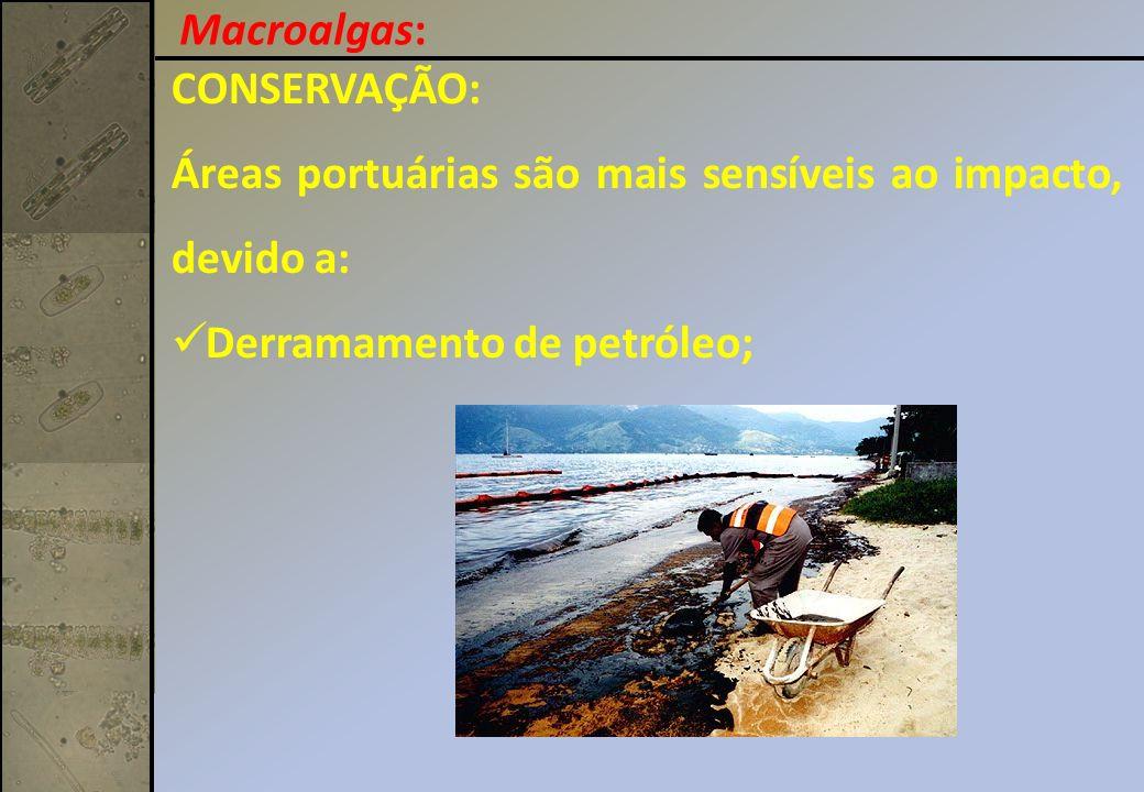 CONSERVAÇÃO: Áreas portuárias são mais sensíveis ao impacto, devido a: Derramamento de petróleo; Macroalgas: