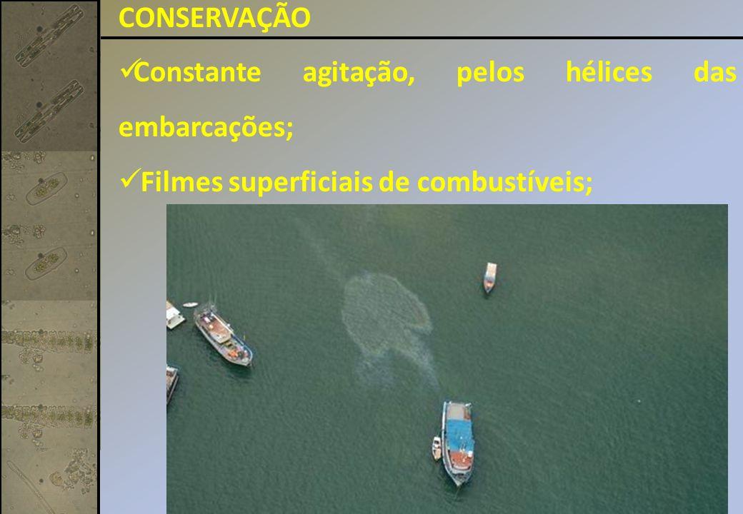 CONSERVAÇÃO Constante agitação, pelos hélices das embarcações; Filmes superficiais de combustíveis;